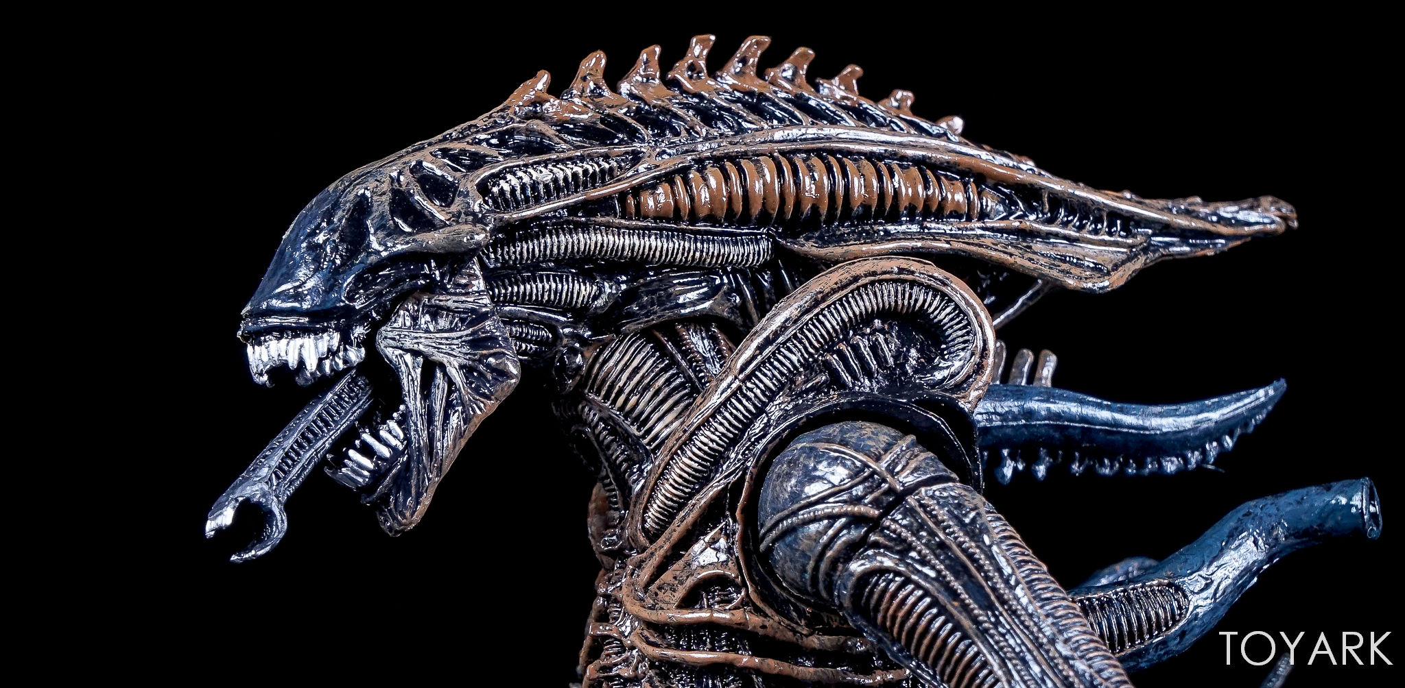http://news.toyark.com/wp-content/uploads/sites/4/2017/08/NECA-Alien-Series-11-Figures-019.jpg