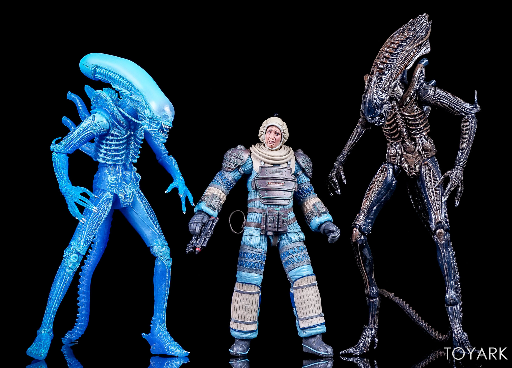 http://news.toyark.com/wp-content/uploads/sites/4/2017/08/NECA-Alien-Series-11-Figures-028.jpg