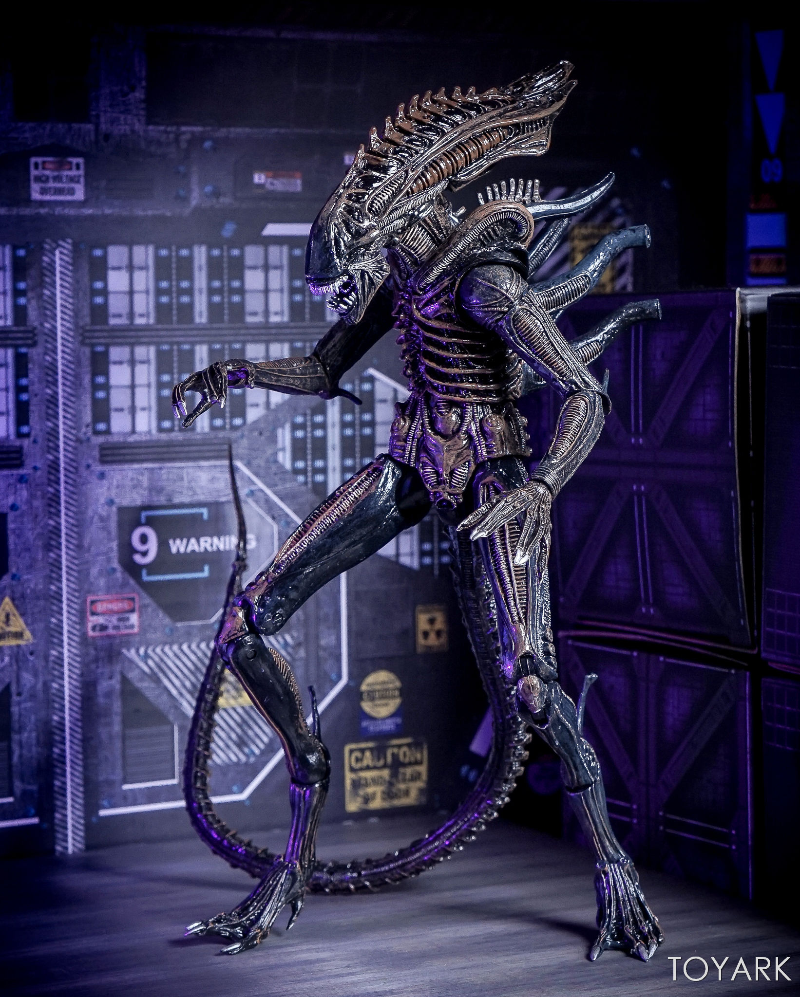 http://news.toyark.com/wp-content/uploads/sites/4/2017/08/NECA-Alien-Series-11-Figures-054.jpg