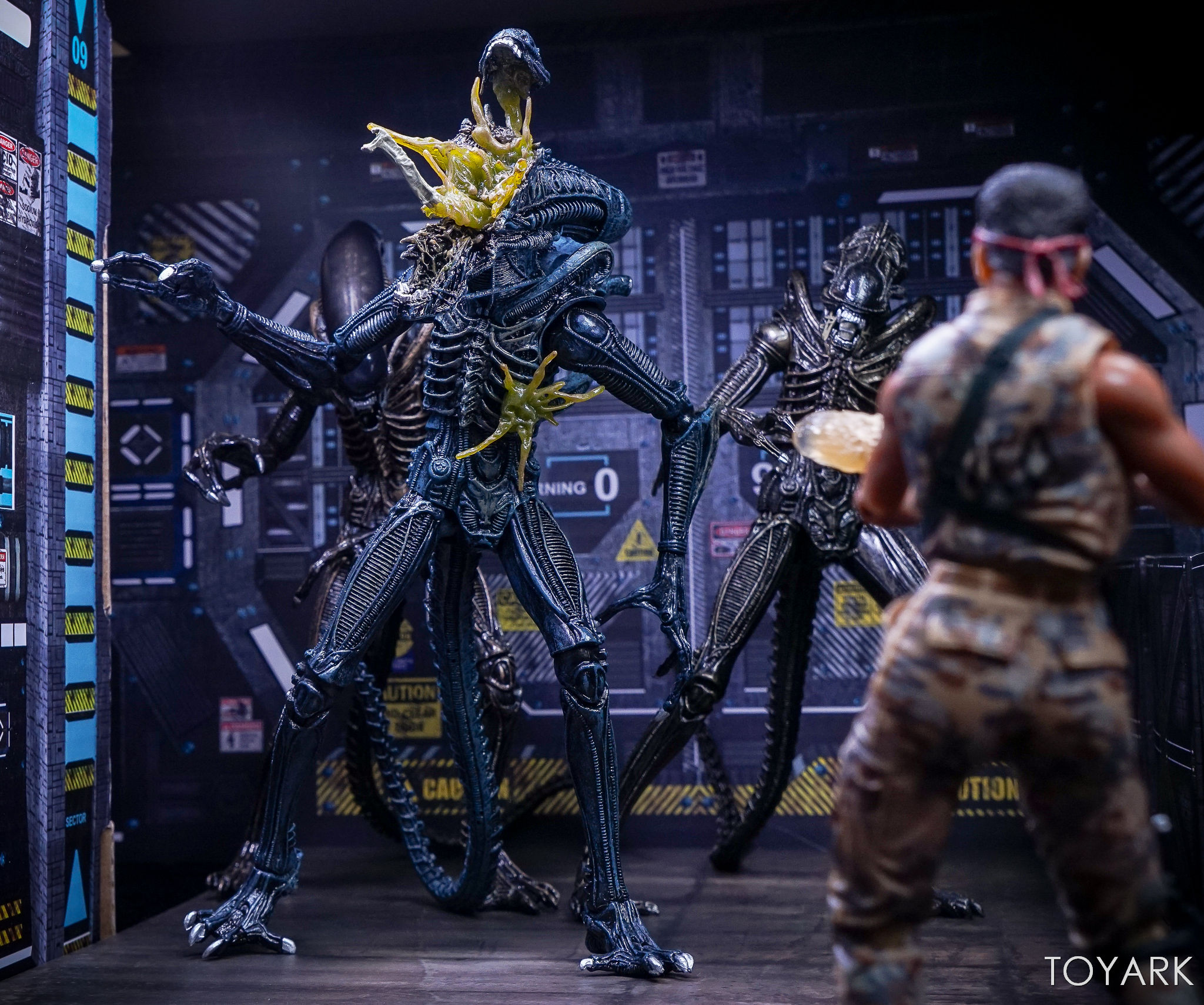 http://news.toyark.com/wp-content/uploads/sites/4/2017/10/NECA-Aliens-Series-12-Figures-031.jpg