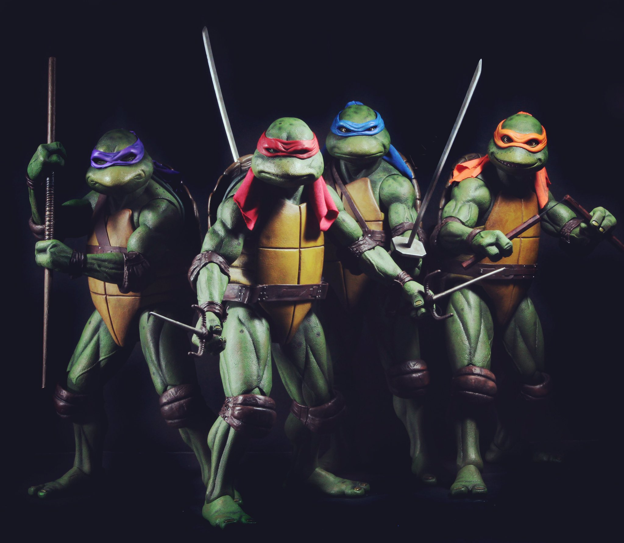 Teenage Mutant Ninja Turtles 2017 Raphael Gallery ...