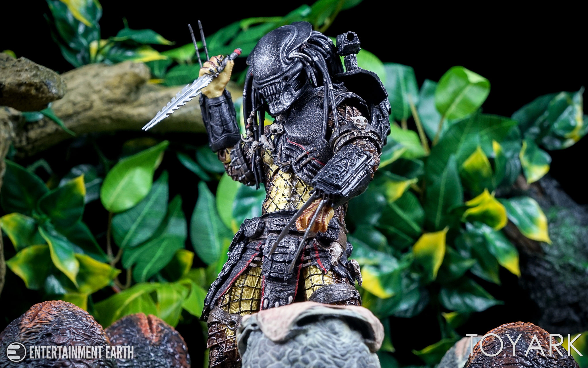 predator - photo #41