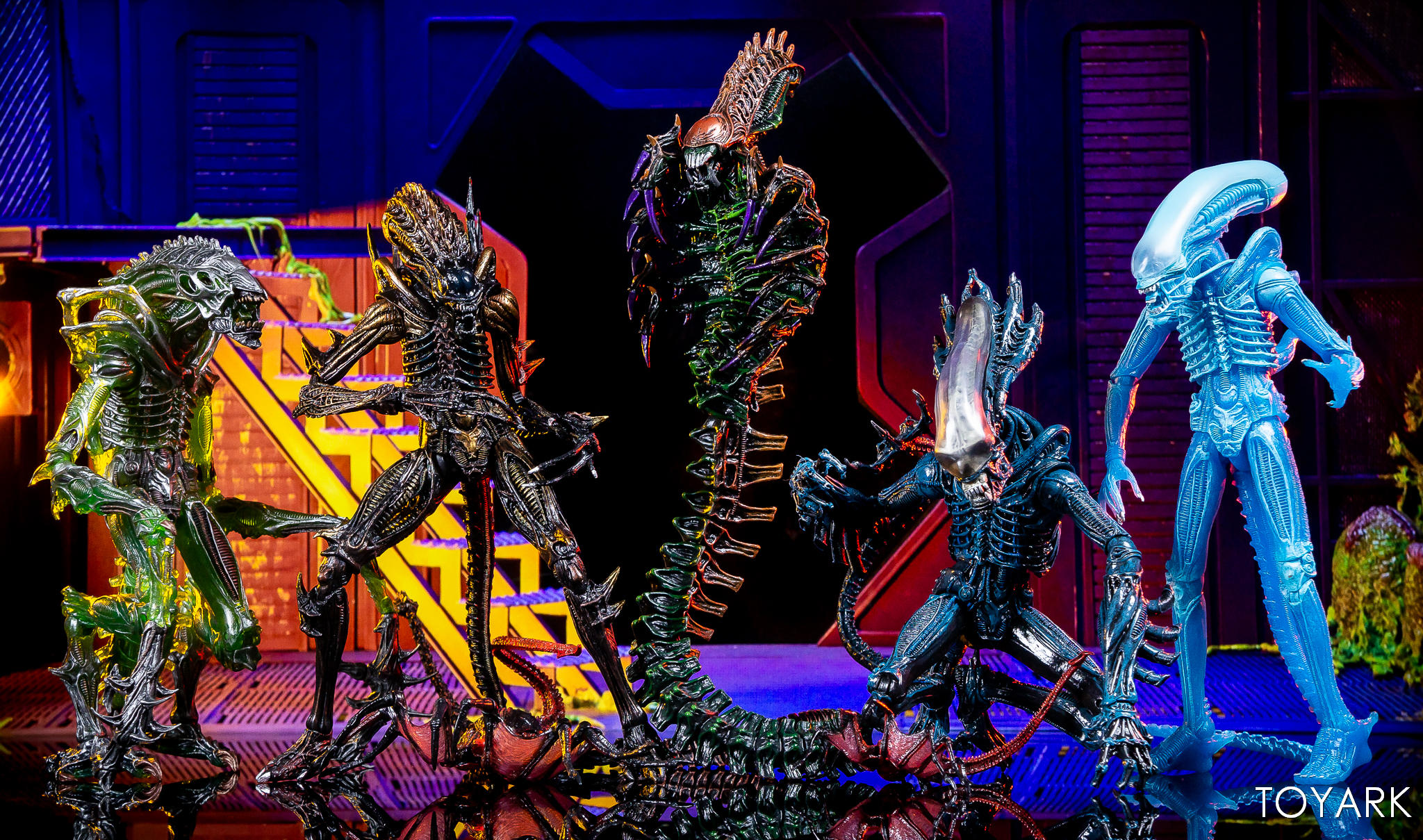 https://news.toyark.com/wp-content/uploads/sites/4/2019/02/Aliens-Series-13-NECA-Gallery-059.jpg
