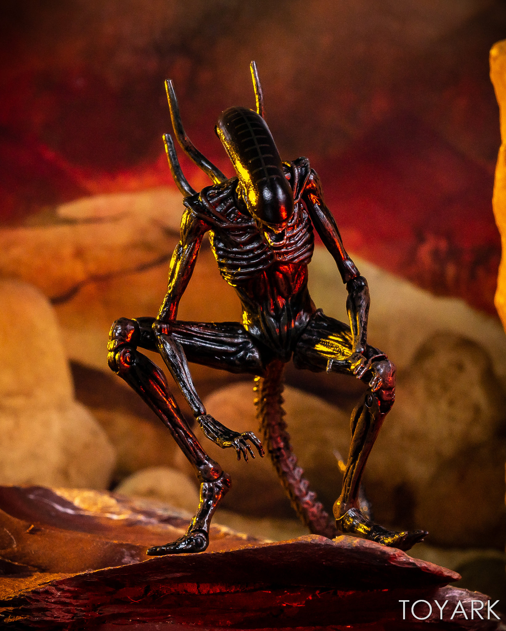 https://news.toyark.com/wp-content/uploads/sites/4/2019/02/Hiya-Toys-Alien-Covenant-Figures-033.jpg