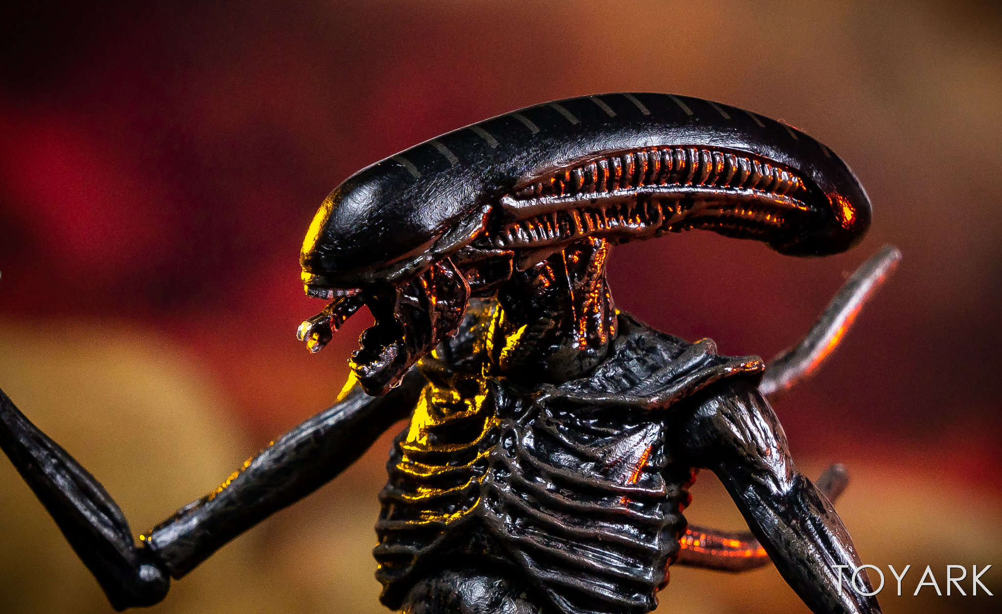 https://news.toyark.com/wp-content/uploads/sites/4/2019/02/Hiya-Toys-Alien-Covenant-Figures-035.jpg