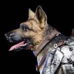 Chronicle Dogmeat Statue 014