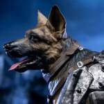 Chronicle Dogmeat Statue 019
