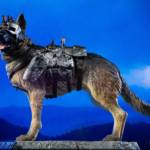 Chronicle Dogmeat Statue 023