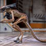 Alien 3 Creature Set 012