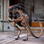 Alien 3 Creature Set 013