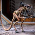 Alien 3 Creature Set 014