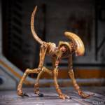 Alien 3 Creature Set 018