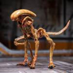 Alien 3 Creature Set 020
