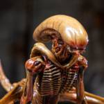 Alien 3 Creature Set 022