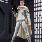 Black Series Padme 09
