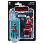 STAR WARS THE VINTAGE COLLECTION 3.75 INCH Figure Assortment ZORII BLISS in pck