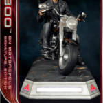 DSC T 800 on Motorcycle 023