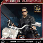 DSC T 800 on Motorcycle 029
