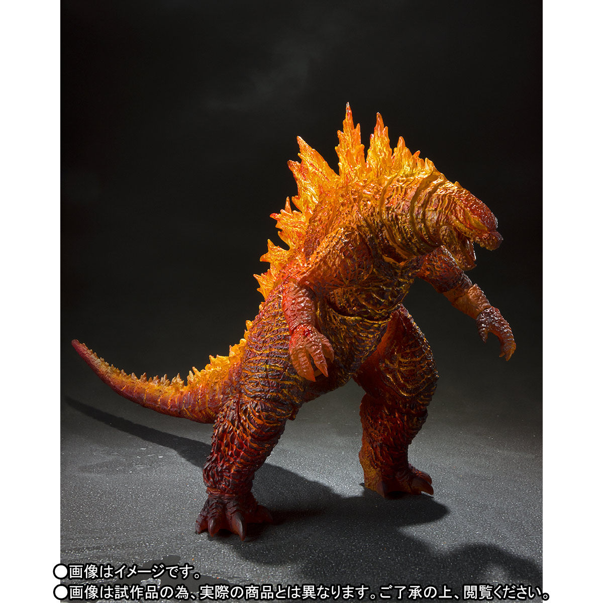 SH MonsterArts 2019 Burning Godzilla 003