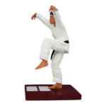 Karate Kid Tournament Statue Set 022