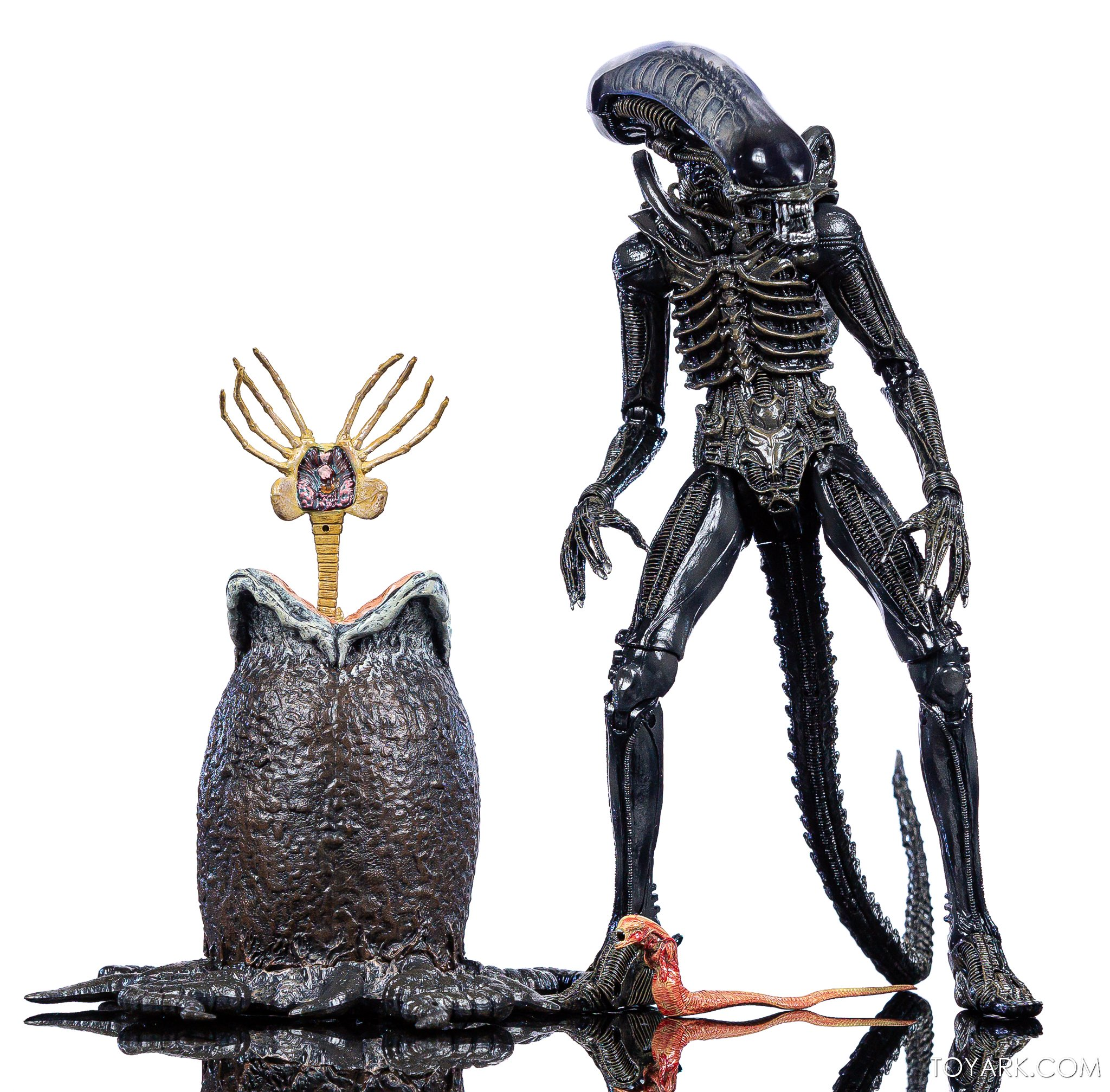 https://news.toyark.com/wp-content/uploads/sites/4/2020/01/NECA-Big-Chap-Alien-Ultimate-031.jpg