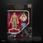 STAR WARS THE BLACK SERIES 6 INCH LUKE SKYWALKER AND YODA JEDI TRAINING DELUXE Figures in pck