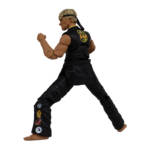 Icon Heroes Karate Kid Action Figures 008