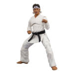 Icon Heroes Karate Kid Action Figures 016