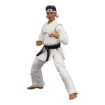Icon Heroes Karate Kid Action Figures 018