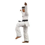 Icon Heroes Karate Kid Action Figures 019
