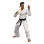 Icon Heroes Karate Kid Action Figures 020