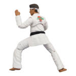 Icon Heroes Karate Kid Action Figures 021