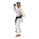 Icon Heroes Karate Kid Action Figures 022