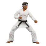 Icon Heroes Karate Kid Action Figures 024