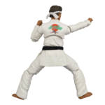 Icon Heroes Karate Kid Action Figures 026