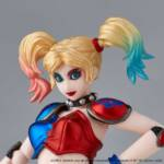 Revoltech New Color Harley Quinn 012
