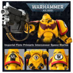 Bandai Warhammer 40K Imperials Fists Intercessor 010