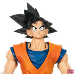 Imagination Works Goku 12