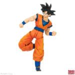 Imagination Works Goku 28