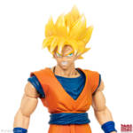 Imagination Works Goku 43