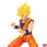 Imagination Works Goku 44