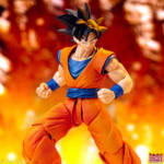 Imagination Works Goku 54